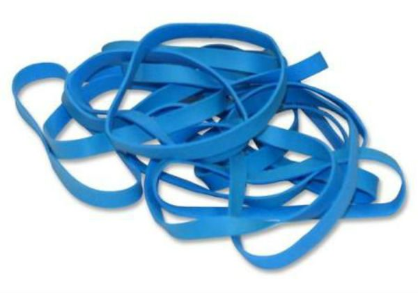 Scallop Shell Rubber Bands