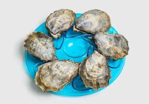 Presentation Oyster Plates