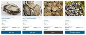 Triskell Seafood Ltd have announced this month that their new Online Shellfish Sales Portal is live. They are inviting growers across the country to get in touch and get involved!